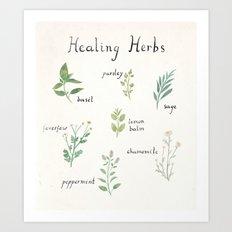 Healing Herbs Art Print