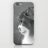 Whiskers iPhone 6 Slim Case