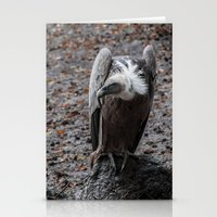 Vulture After Rainin' Stationery Cards
