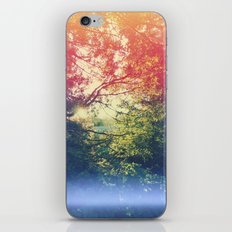 Through the Looking Glass iPhone & iPod Skin
