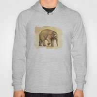 Baby Elephant A081 Hoody