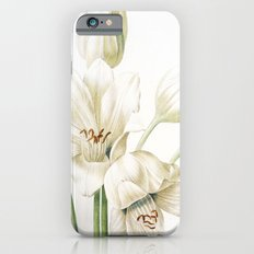 VI. Vintage Flowers Botanical Print by Pierre-Joseph Redouté - Crinum Jagus iPhone 6s Slim Case