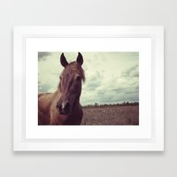 Portrait of a Horse Framed Art Print