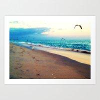 Lotsa More Gulls Art Print