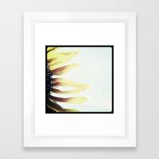 FLOWER 016 Framed Art Print