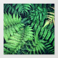 50 Shades Of Green (1) Canvas Print
