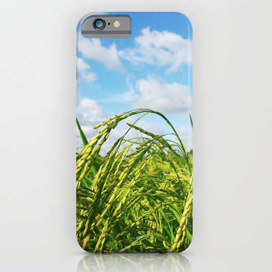 Ripe Rice iPhone & iPod Case