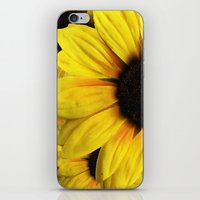 Sun Flower iPhone & iPod Skin