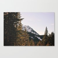Snow Mountain In The Tre… Canvas Print