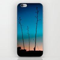 Arizona Desert Sunset  iPhone & iPod Skin