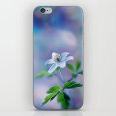 Blue Anemone iPhone & iPod Skin