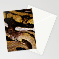 Wrapped Up Stationery Cards