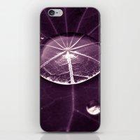 Purple Water Drop XVI iPhone & iPod Skin