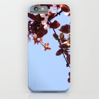 cherry blossom iPhone & iPod Cases featuring Cherry Blossom by madbiffymorghulis
