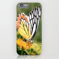 Butterfly (2) iPhone 6 Slim Case