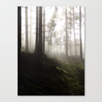 2004 - Serial Killers II - Nature (High Res) Canvas Print