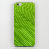 Green 8869 iPhone & iPod Skin