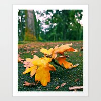 Art Print featuring Autumn leaf fallen by Vorona Photography