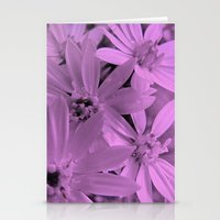 Pink Daisies Stationery Cards