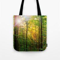 Morning sun in the forest Tote Bag