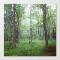 Foggy Forest Landscape P… Canvas Print