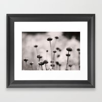 3, 2, 1 Framed Art Print