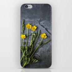 Hello Buttercup - Yellow Flower  iPhone & iPod Skin