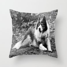 greenland dog Throw Pillow