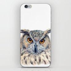 Eage Owl CC1404 iPhone & iPod Skin