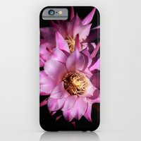 iPhone & iPod Case featuring Queen of the Night by CarP