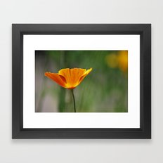 ray of sunshine Framed Art Print