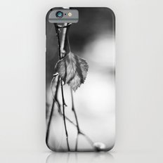 Last Leaf of Winter in Black and White iPhone 6 Slim Case