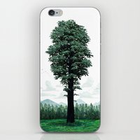 Giant Sequoia iPhone & iPod Skin