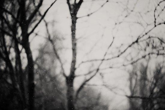 the silence ... Art Print