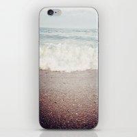 Crash iPhone & iPod Skin