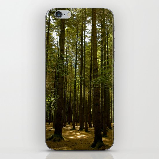 Stover Woods iPhone & iPod Skin