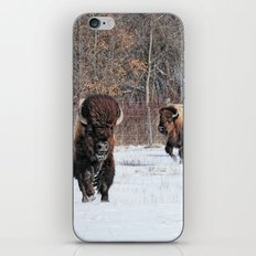 Running Wild iPhone & iPod Skin