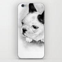 Bijou iPhone & iPod Skin