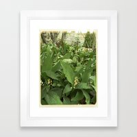 Old Lilies Framed Art Print