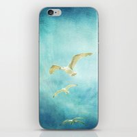 brighton seagulls iPhone & iPod Skin
