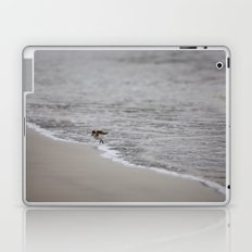 Lonely Sandpiper Laptop & iPad Skin
