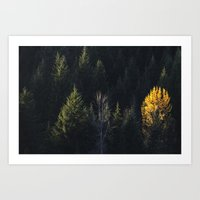 Fall at Trillium Lake, OR Art Print