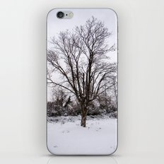 Lonely Winter iPhone & iPod Skin