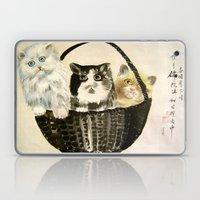 Three Kittens Laptop & iPad Skin