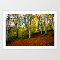 Autumn Trees Woodland Art Print