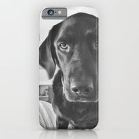 Dog 2 iPhone 6 Slim Case
