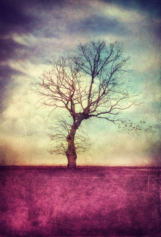 ATMOSPHERIC TREE Art Print