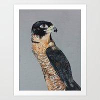 The Falconine Art Print