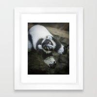 Lemur In The Glass Framed Art Print