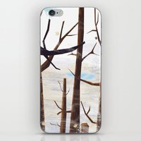 Trees Tops iPhone & iPod Skin